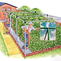 Deluxe Fruit Cage Door