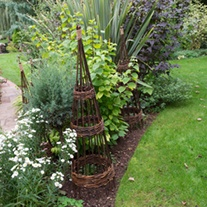 Concentric Willow Obelisks 1.5m