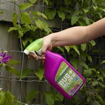 Bug & Mildew Control Spray