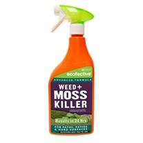 Weed & Moss Killer Spray