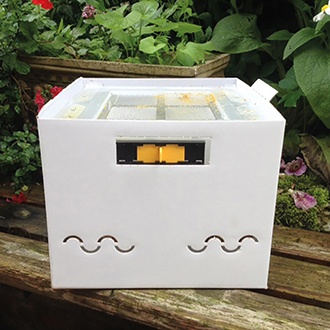 Beepol Replacement Hive