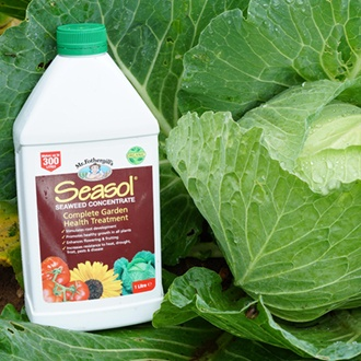 Seasol Organic Seaweed Concentrate 1ltr