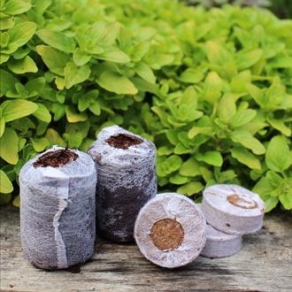 Coco Grow Pure Coir Seed Germination Dots x 48
