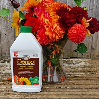 Seasol Organic Seaweed Concentrate 1ltr