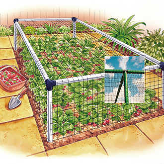 Deluxe Strawberry Cage 3'x12'