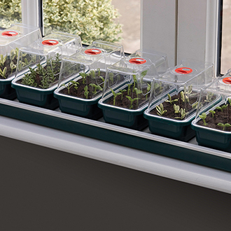 Super 7 Non-Electric Windowsill Propagator