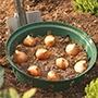 Bulb Planter - Round 26cm