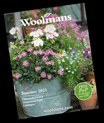 Woolmans Plant Catalogue