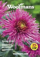Woolmans Chrysanthemum & Ornamental Plant Catalogue Request