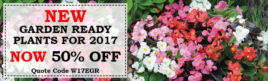 50% Off New Garden Ready Plants
